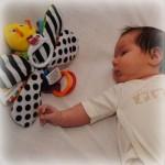 15 zwart-wit speeltjes en ideetjes voor babies